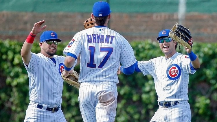 In a game that featured 25 total hits, including six home runs, the Cubs were thrilled to come away with a win. (Credit: Jon Durr-USA TODAY Sports)