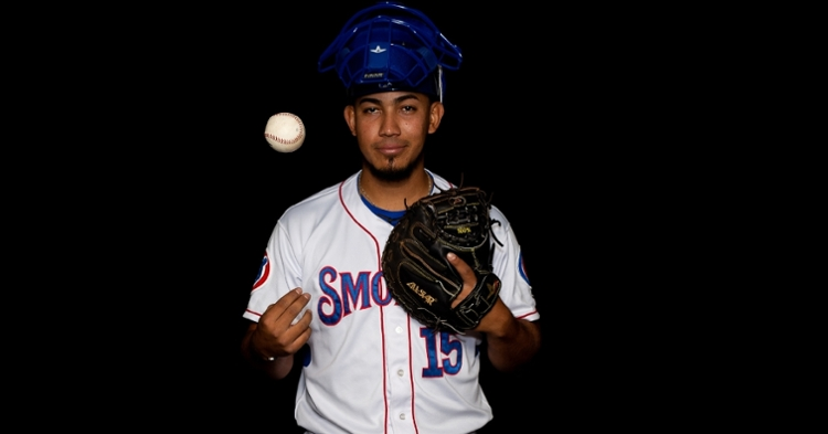 Pereda was sent to the Red Sox to finalize a recent trade (Photo credit: Smokies)