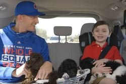 WATCH: Mike Montgomery answer questions with puppies