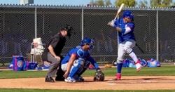 PHOTOS: Chicago Cubs spring training 2020 (75 photos)