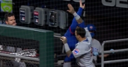 WATCH: Cubs celebrate in dugout after finding out they won division title