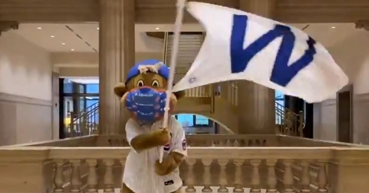 Clark the Cub is ready for the postseason