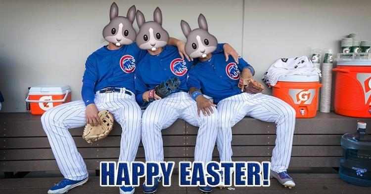 Photo credit: Cubs