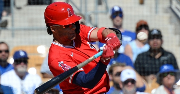 Hermosillo could be the Cubs' 4th or 5th outfielder in 2021 (Joe Camporeale - USA Today Sports)