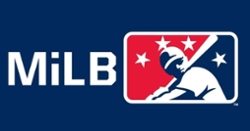 2020 Minor League Baseball season canceled