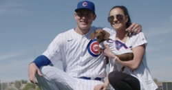 WATCH: Cubs players bring their cute dogs to Spring Training