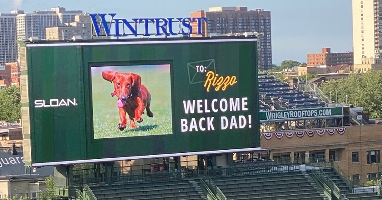 Kevin Rizzo had a nice message for his dad, who returned to action on Wednesday. (Credit: @EVR551 on Twitter)