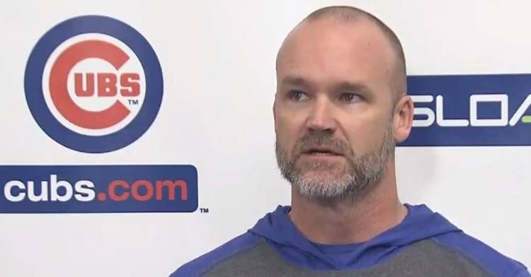 David Ross will be in his first season as a manager in 2020