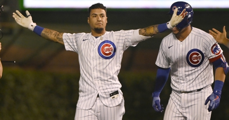 Baez was thrilled after the one-pitch walk-off single (Matt Marton - USA Today Sports)