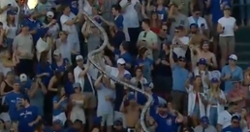 WATCH: Cubs fans form insanely long 'beer snake' at Wrigley Field
