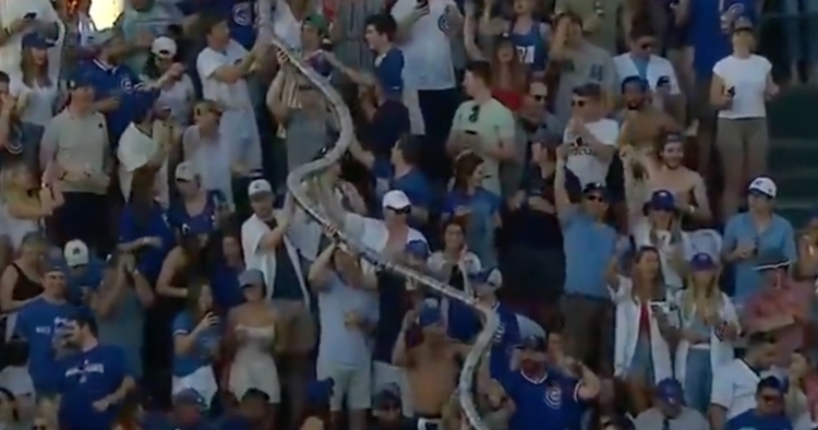 Cubs fans came together in hoisting an oversized stack of plastic beer cups above their heads.