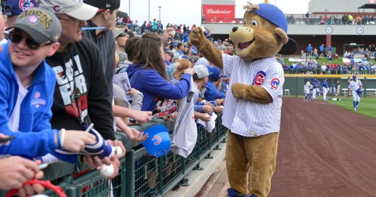 Clark the Cub was ranked the top mascot in MLB (USA Today Sports)