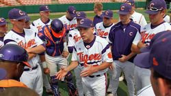 Haselden Pitches Tigers to 9-2 Win Over Paladins