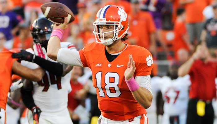 Stoudt completed 20-of-33 passes for 162 yards, including going 3-of-3 on Clemson's last drive.