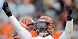 Former Clemson DT re-signs with Bengals