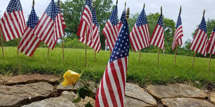 A yellow rose sits among the flags