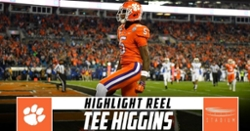 WATCH: Tee Higgins 2019 highlights