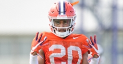 Former Clemson DB commits to Marshall